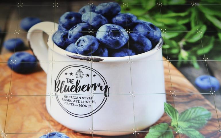 HOTSPOT: The Blueberry (Amersfoort)